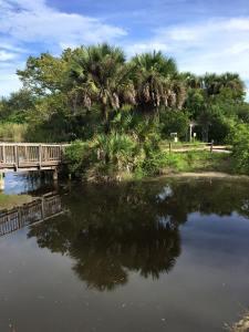 Merritt Island Park in Florida's northeastern coast