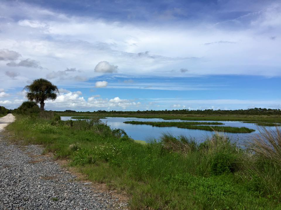 Merritt Island - Florida's Northeastern Coast