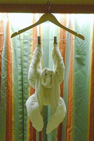 Cruise Towel Monkey