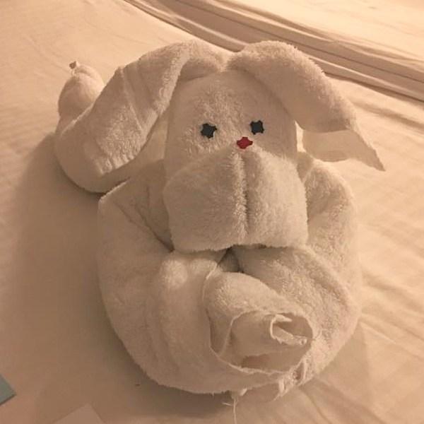 Cruise Towel Rabbit