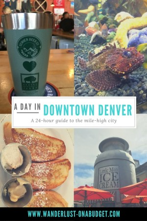 A Day in Downtown Denver - things to do in Denver - downtown aquarium, Denver Beer Company, Little Man Ice Cream - Wanderlust on a Budget