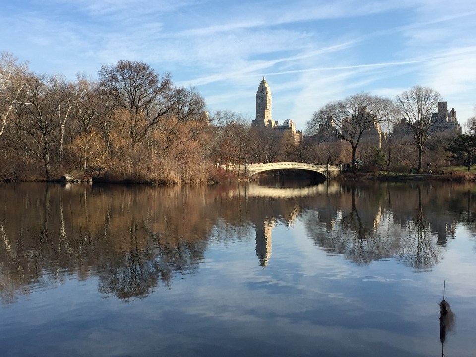 NYC Central Park Lake