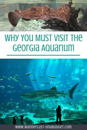 Atlanta Georgia - Georgia Aquarium - Coca-Cola Museum - Terrapin Brewery - www.wanderlust-onabudget.com