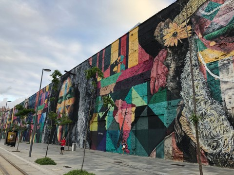 Olympic Boulevard Kobra Mural Brazil 1