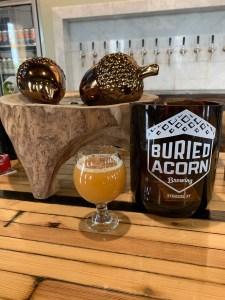 Buried Acorn Beer