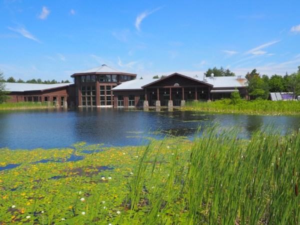 The Wild Center Pond