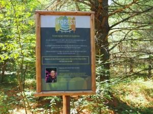 The Wild Center iForest