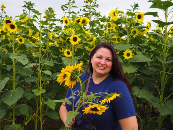 Dani at Wickham Sunflower Farm in Rochester New York