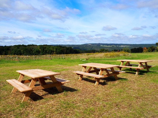 South Hill Cidery View
