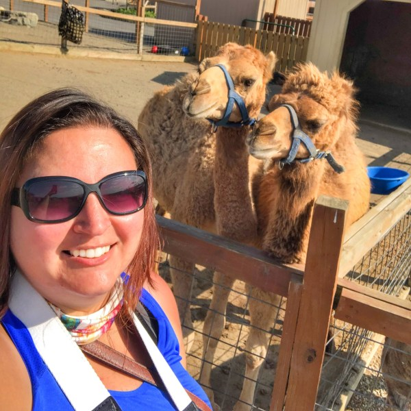 Dani and Camels at Animal Adventure Park