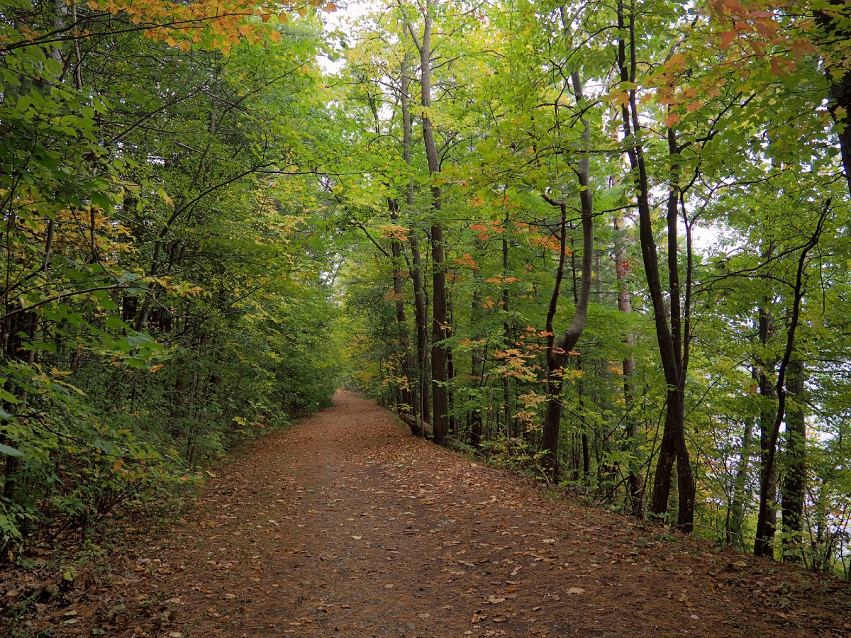 Keuka Lake State Park Trail