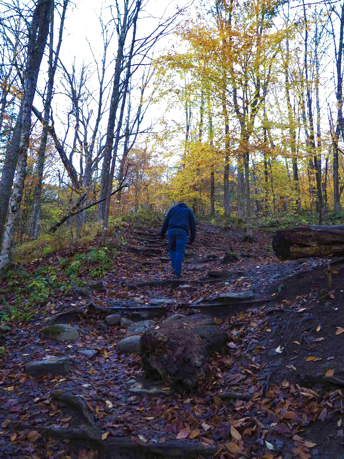 Josh at Pixley Falls