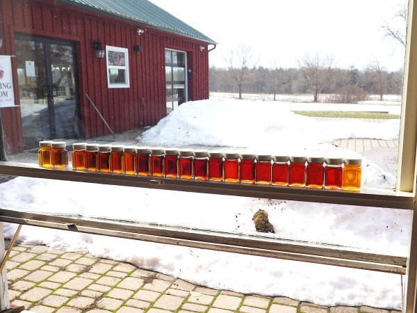 Critz Farms Maple Samples 2019