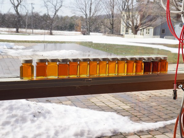 Critz Farms Maple Samples 2020