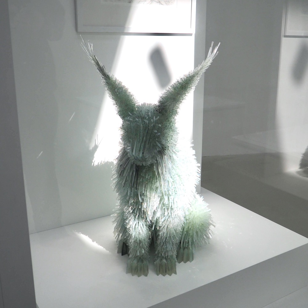 Glass Animal