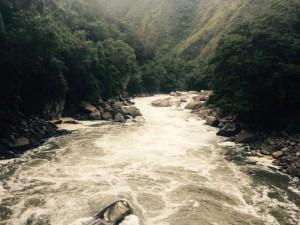 Contiki Tours River