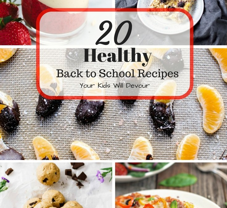 20 Healthy Back to School Snacks the Kids will Devour