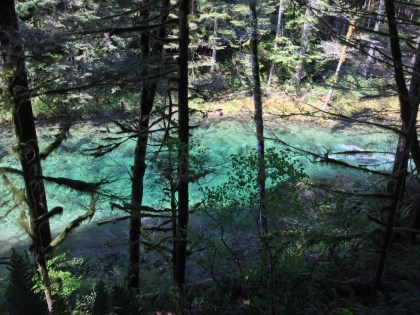 4 Reasons Why the 'Dangerous Beauty' Award Goes to Siouxon Loop