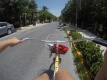 Biking to the ceyote
