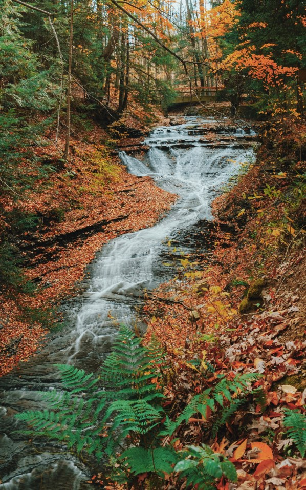 bedford reservation best fall hikes near cleveland