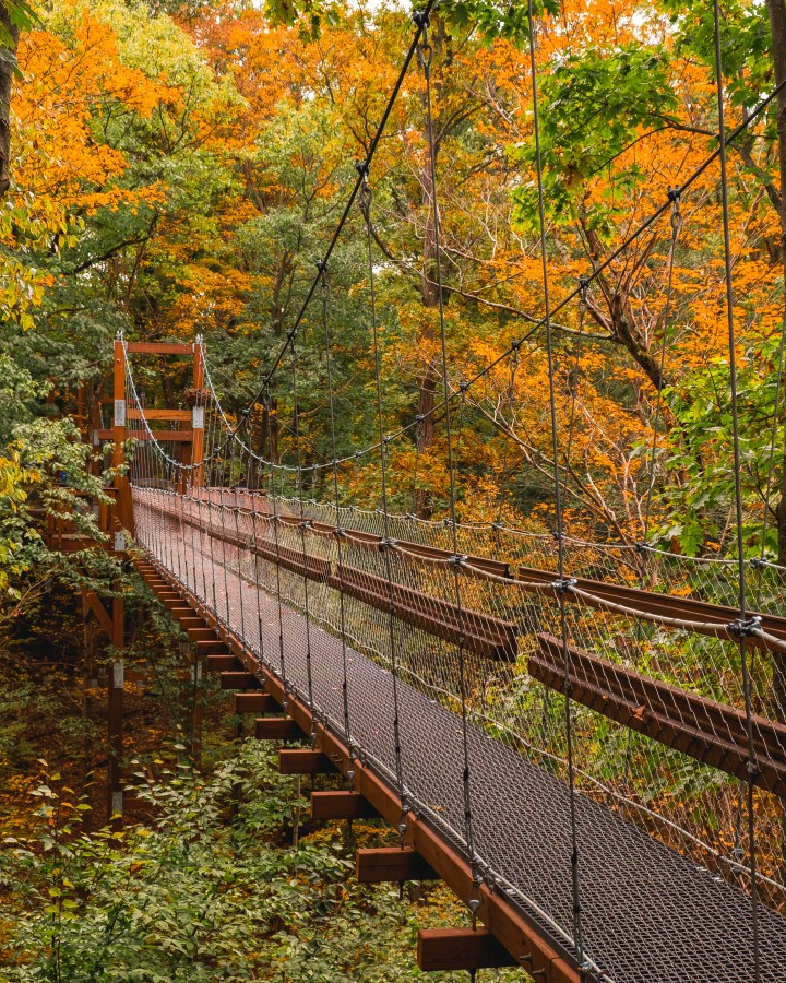 10 Best Fall Hikes Near Cleveland