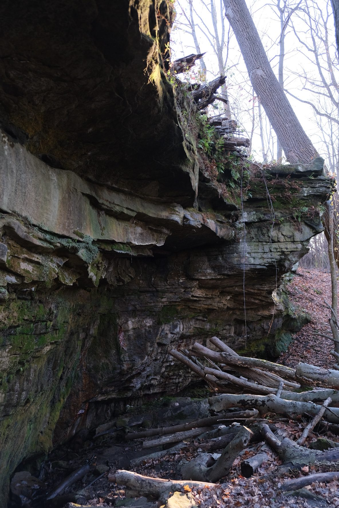 princess ledges nature preserve ohio
