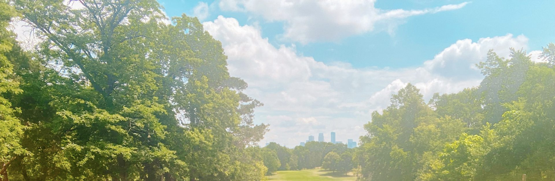 View off a tee box at Theodore Wirth golf club in Minneapolis view of downtown skyline