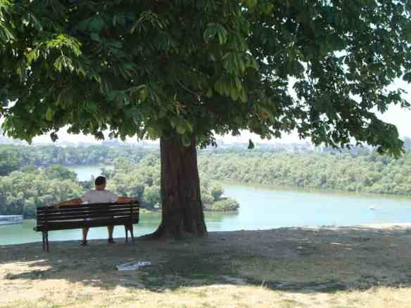 A man enjoys his bench and the intersection of the Danube and Sava rivers in Belgrade. American in Belgrade