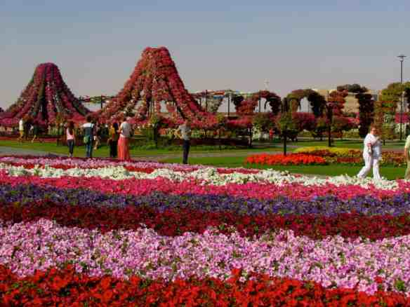 Dubai on our 8 year wedding anniversary. The largest flower garden in the world is kinda romantic, albeit touristy.