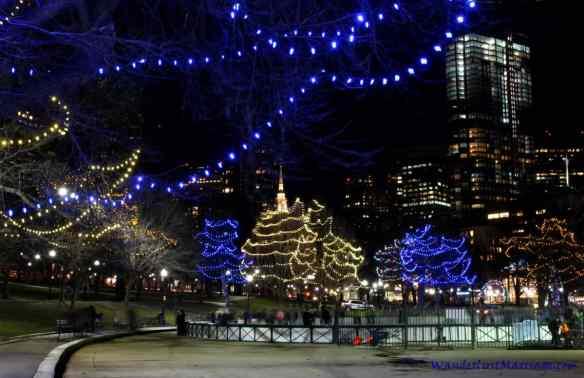 Frogpond, Christmas Lights of Boston