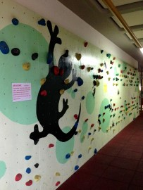 I wish I had a climbing wall at my school...