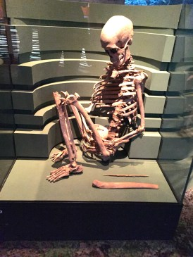 We also stopped at the Swedish National History Museum. This is skeleton of a 5,000 year old woman.