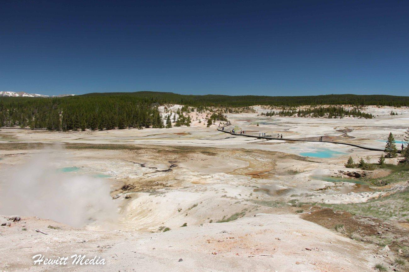Yellowstone-1537