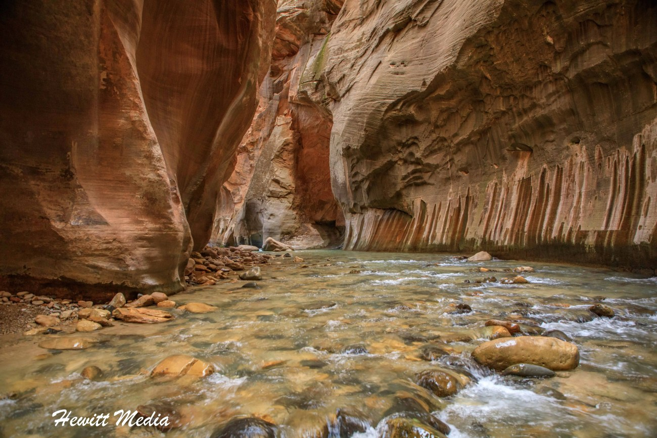 Zion National Park (Narrows)-6610