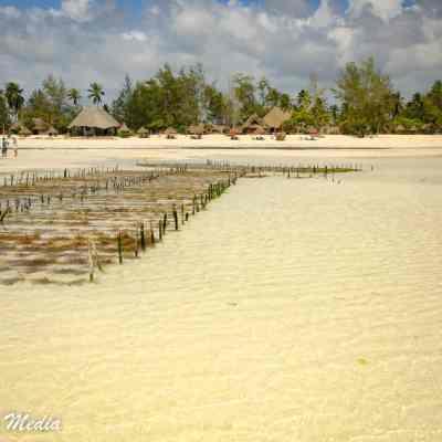 Paje Beach in Zanzibar
