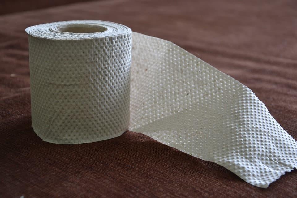 toilet-paper-313822_960_720.jpg