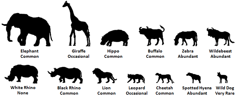 Animals in Ngorongoro.png