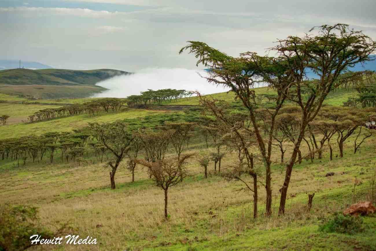 Ngorongoro Crater-2043