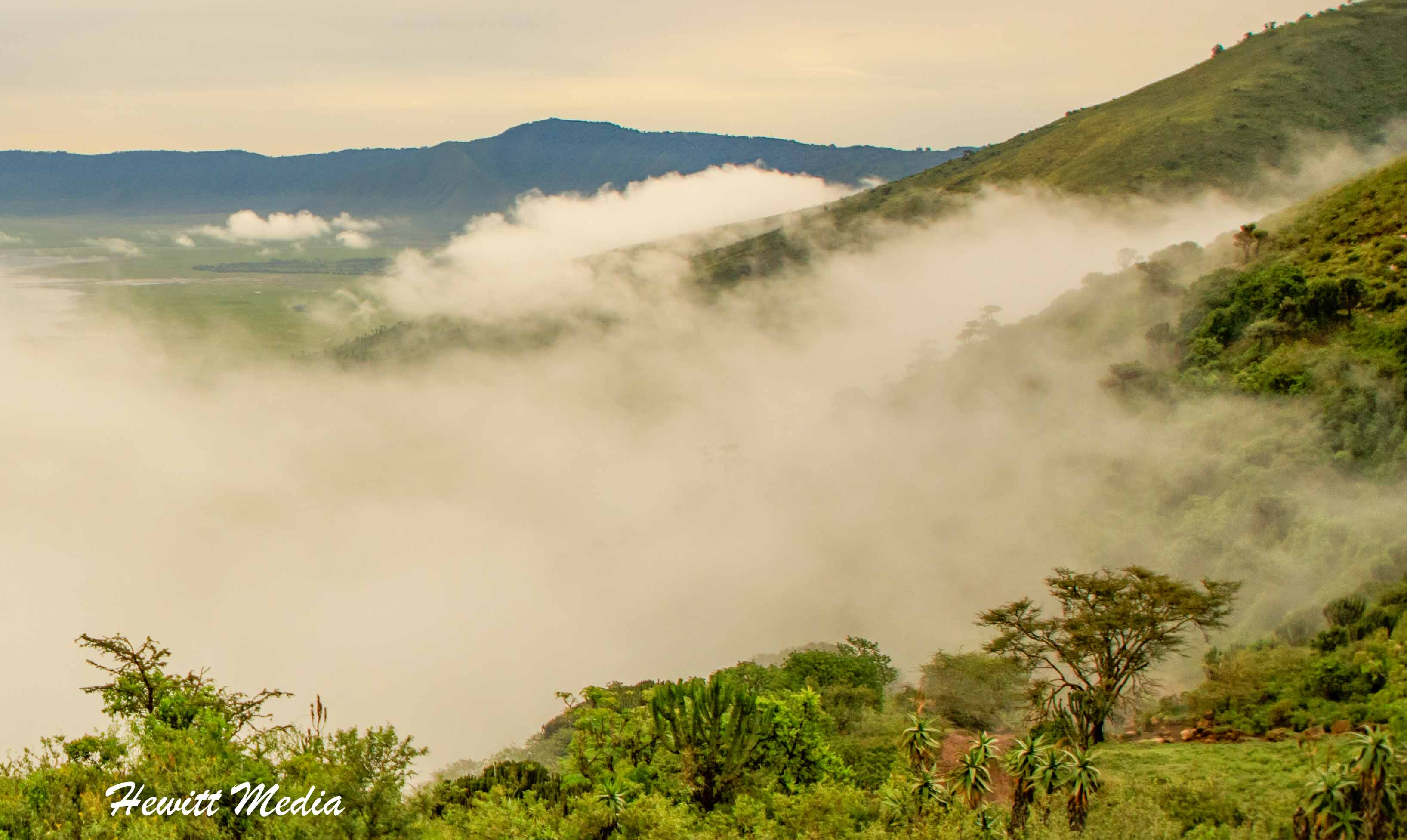 The Ngorongoro Crater under morning fog
