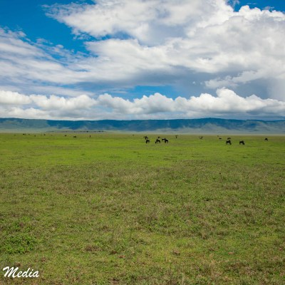 You can see here how vast the Ngorongoro Crater is