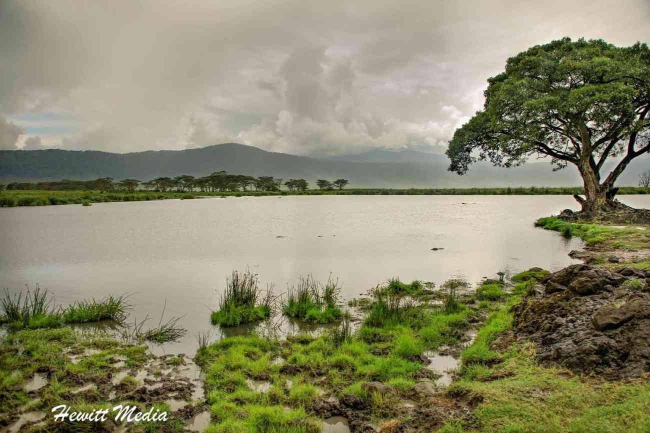 Ngorongoro Crater-2923
