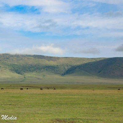 You can see how vast the Ngorongoro Crater is from this shot