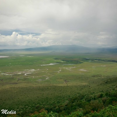 A view from on top of the rim of the Ngorongoro Crater