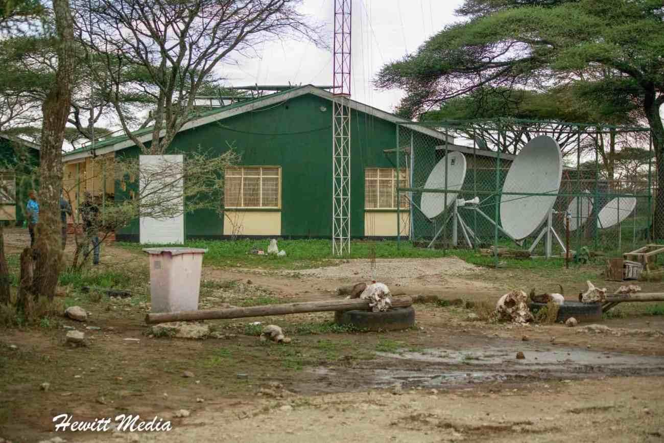 Serengeti-1410