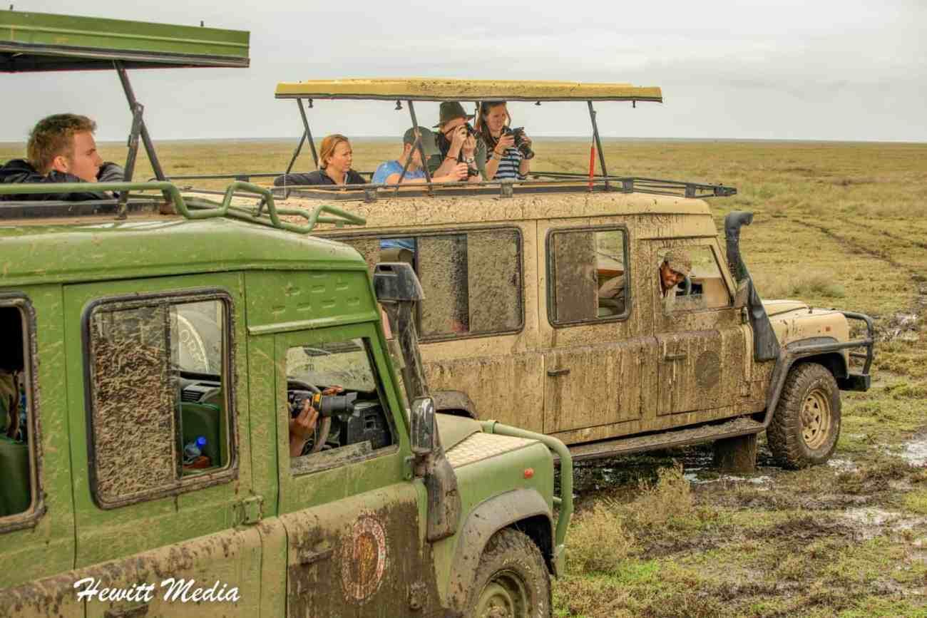 Serengeti-1824