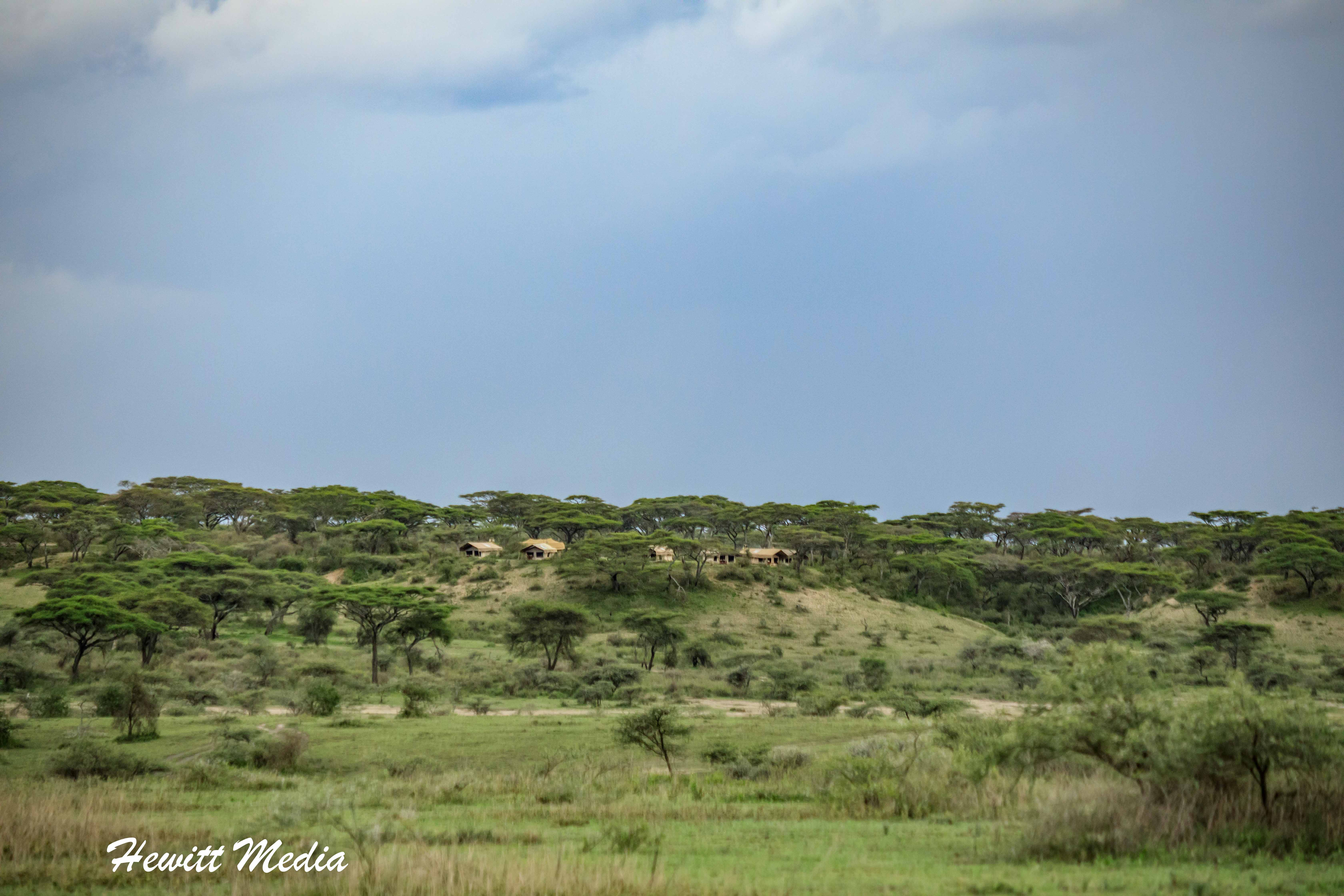 Our campsite on the bluff in the Serengeti National Park