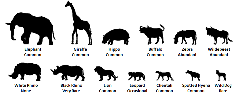Serengeti Animals.png