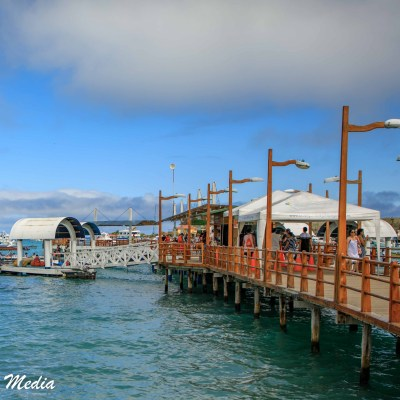 The dock on Isabela Island.