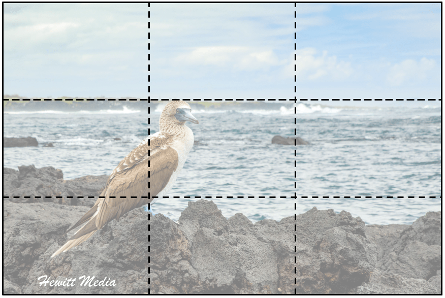 Rule of Thirds.png