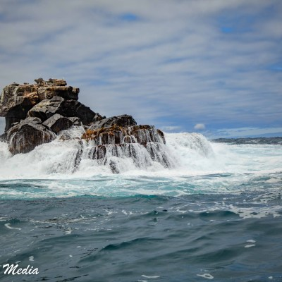 Birds rest on the top of a Islet as waves crash against the rocks off Isabela Island.
